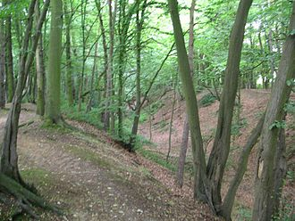 History of Hertfordshire - Beech Bottom Dyke