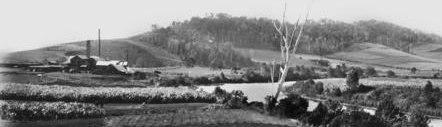 Beenleigh Distillery ca. 1912