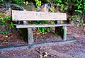 Bench beside the Lake Marie Trail in Umpqua Lighthouse State Park.jpg