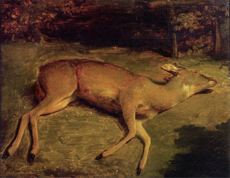 Biche morte by Courbet