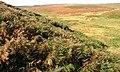 Biller Howe Dale Slack - geograph.org.uk - 251839.jpg