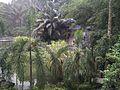 Bird Park in Kuala Lumpur (Malaysia) (46).jpg