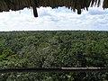 Bird Watching Place at Sian Ka'an - panoramio.jpg