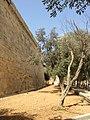 Birgu fortifications 59.jpg