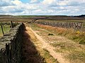 Black Edge Lane, Thornton Moor - geograph.org.uk - 40023.jpg