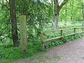 Blackpool Brook Forest Trail, Wench Ford - geograph.org.uk - 810981.jpg