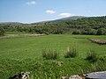 Blaenau Dolwyddelan, pasture land - geograph.org.uk - 1334700.jpg