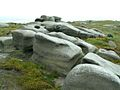 Bleaklow Stones Rock Feature - geograph.org.uk - 458520.jpg
