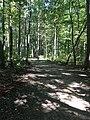 Blendon Woods Metro Park October 2018 13.jpg