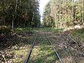 Bocznica kolejowa Las Zwierzyniecki Tenczynek.jpg