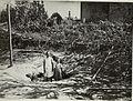 Bombentrichter einer Fliegerbombe in Bozen (BildID 15519848).jpg