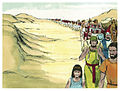 Book of Exodus Chapter 13-10 (Bible Illustrations by Sweet Media).jpg