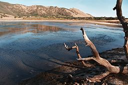 Borax Lake, California.jpg