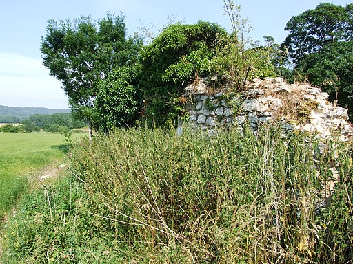 Boxley Abbey ruins geograph-3570324-by-Chris-Whippet