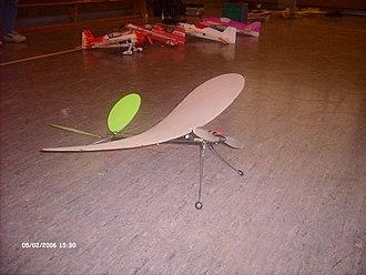 Park flyer - Braun Modelltechnik Stubenfliege indoor flyer