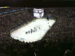 Bridgestone Arena - Bridgestone Arena January 15 2011