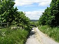 Bridleway - Manywells Brow - geograph.org.uk - 840547.jpg
