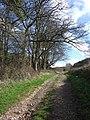 Bridleway T 19-8 - geograph.org.uk - 353053.jpg
