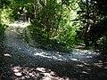 Bridleway in Ashford Hanger - geograph.org.uk - 954056.jpg
