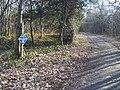 Bridleway in Mereworth Woods - geograph.org.uk - 1200095.jpg