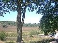 Brunssummerheideoverview.jpg