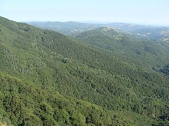 Bulgarka Nature Park - Bulgarka Nature Park