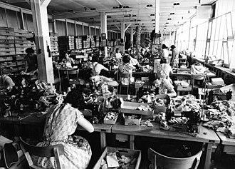 Giengen - Teddy bear production at Margarete Steiff GmbH, Giengen, 1960