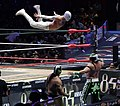 CMLL November 30 Mistico dive on Euforia.jpg