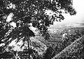 COLLECTIE TROPENMUSEUM Gezicht vanuit de bergen op Gorontalo TMnr 60018663.jpg