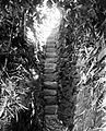 COLLECTIE TROPENMUSEUM Trap in kampong Koidrafo Nias TMnr 10007805.jpg