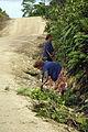 CSP roadworks, Auki-Malu'u, Solomon Islands 2007. Photo- Rob Maccoll - AusAID (10690537243).jpg