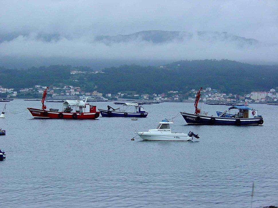 Cabo de Cruz GDFL 0507 62