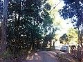 Campo Limpo Paulista - SP - panoramio (13).jpg