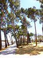 Campo de Criptana - Parque Luis Cobos 2.jpg