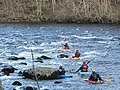Canoeists on the Tay - geograph.org.uk - 92156.jpg