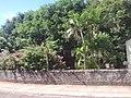 Capela São Marcos - panoramio (2).jpg