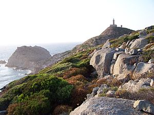 San Pietro Island - The coast and the lighthouse of Capo Sandalo