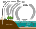 Carbon cycle-simple diagram.png