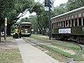 Carrollton New Orleans 1 July 2020 - By Carrollton Avenue and Oak Street - Two streetcars.jpg