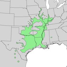 Carya illinoinensis range map 1.png