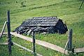 Casa en ruinas (8151365932).jpg
