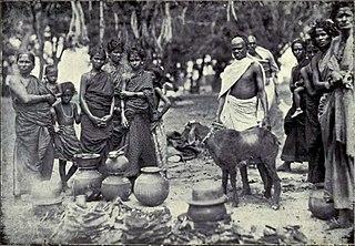 Vanniyar A Hindu agrarian caste
