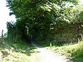 Castle lane which leads to Knowle - geograph.org.uk - 1921490.jpg