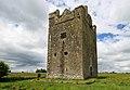 Castles of Connacht, Isert Kelly, Galway (2) - geograph.org.uk - 1953623.jpg