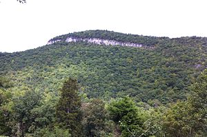 Smoke Hole Canyon - The Cave Mountain Anticline exposed as a cliff-face in Cave Mountain Gap.