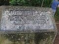 Ceiba Árbol de la Paz 5.jpg