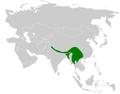 Cettia castaneocoronata distribution map.png