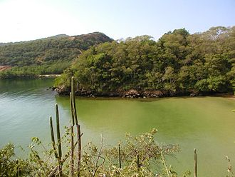 Trinidad and Tobago dry forests - Tropical dry forest in Chacachacare