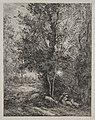 Charles François Daubigny - The Shepherd and the Shepherdess - 1956.656 - Cleveland Museum of Art.jpg