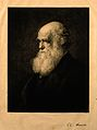Charles Robert Darwin. Etching by P. A. Rajon, 1875, after W Wellcome V0006491.jpg